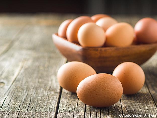 Eier Ungesund