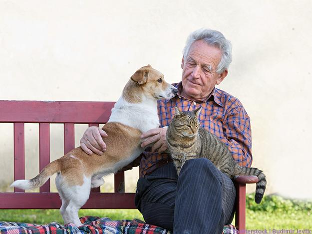 Carstens-Stiftung: Tiergestützte Therapie ist (tierisch) gut für Demenzpatienten