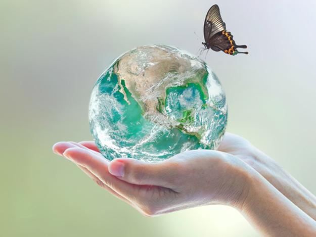 Carstens-Stiftung: One Health als Konzept der Zukunft